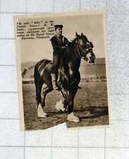 1939 14-year-old Carthorse, Betty, Light Duty, Royal Naval Barracks Plymouth