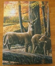Whitetail Deer Cabin Lighted Sign Rustic Lodge Home Decor Light Framed Canvas