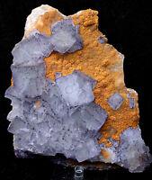 1.8lb NATURAL Blue Purple Green Cubic FLUORITE Crystal Cluster Mineral Specimen