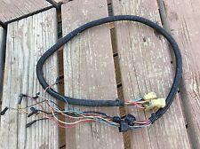 Polaris Wire Harness