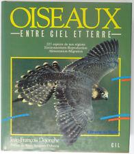 Les oiseaux entre ciel et terre Jean-François Dejonghe 1987