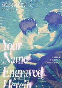 """Your Name Engraved Herein Movie Art Silk Poster 18x12 36x24"""""""