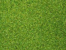 Noch 08371 matériau à saupoudrer sur maquette Vert clair, contenu 200g, 100g =
