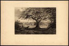 3 Antique Prints-SPADEMILL POOL-STREETLY WOOD-SUTTON PARK-MacPherson-1889