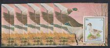 A903. 5x Fujeira - MNH - Animals - Birds