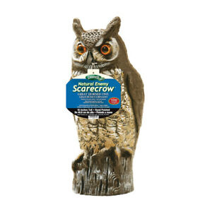 Dalen OW-6 Gardeneer by Natural Enemy Scarecrow Horned Owl 16 H in.
