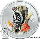 Canada 2008 25 Cents Downy Woodpecker Coloured Coin