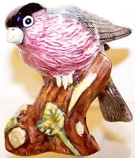 "2005 New Mint in Box Royal Doulton Animals ""Bullfinch� 2¾� Bird Figurine #Rda99"