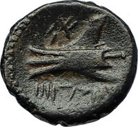 ARADOS in PHOENICIA Authentic Ancient 206BC Greek Coin w ZEUS & GALLEY i69694