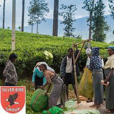 100g Ceylon FBOPF EXSP TEA Finest Broken Orange Pekoe Flowery Extra Special, Tee