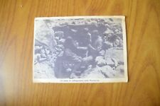 CARTOLINA MILITARI MARMARICA PROPAGANDA P.N.F. VIAGGIATA 1942 SUBALPINA XX