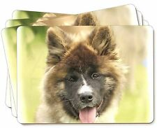 Beautiful Akita Dog Picture Placemats in Gift Box, AD-A4P
