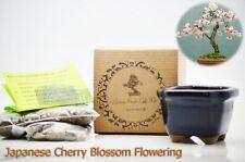 9GreenBox Japanese Cherry Blossom Flowering Bonsai Seed Kit Gift Complete Kit