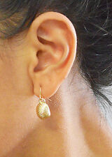 Tiny Cute 1/2 Inches Gold Hypoallergenic Sea Shell Dangle Earring