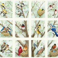 "Elizabeth's Studio Beautiful Birds Songbirds Quilt Fabric 24"" x 44"" Panel"