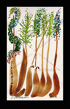Magic of Trees Woods forest Cathy PETERSON Original Watercolor PAINTING = SIGNED