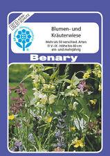 Blumen und Kräuterwiese mehr als 50 Arten ca. 3 m²  Benary Samen Bienenweide