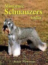 Miniature Schnauzers Today