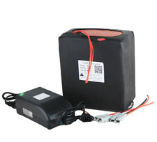 60V 25Ah LiFePO4 Rechargeable Battery Pack For Electric Scooter with 5A charger
