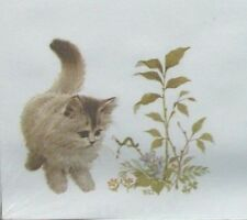 Cat kitten stationery set