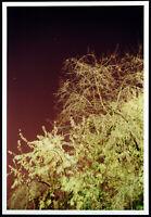 """Himmel"", 2015. Grosse Fotografie (Inkjet) Tobias ZIELONY (*1973 D) handsigniert"