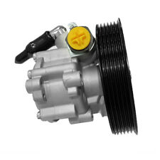 Fit For Renault Dacia Power Steering Pump 491108694R 49110-00Q4B 7700420305A