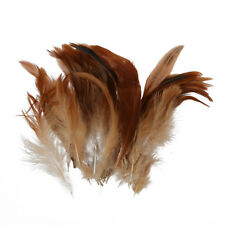 cazzo naturale piuma gallo Decorazione - Ideale per i costumi, cappelli, d K7B8