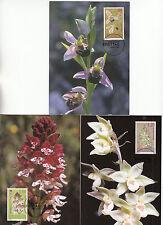 3 Maximumkarten*LIECHTENSTEIN*Orchideen*MK 230*Mi.-Nr. 1352-1354*