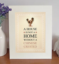 Chinese Crested 8 x 10 A HOUSE IS NOT A HOME Picture 10x8 Dog Print Lovely Gift
