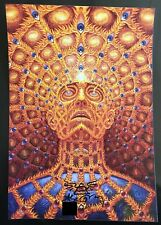 Alex Grey Oversoul Blotter Art Signed and Numbered Limited Edition Pro Shipping
