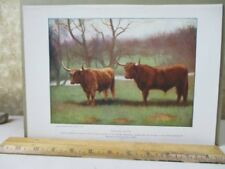 Vintage Print,Highland Cattle,Peoples Natural History Mammals+Birds,1903