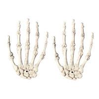 Crane squelette Os de la main humaine Zombi de Toussaint Accessoires effray M1E2