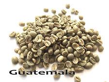 5 LBS Green Coffee - Guatemala SHB EP - specialty grade green beans
