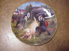 "Yard Work - Labs - Royal Doulton 8"" Very Fine Collector Plate E-2062"