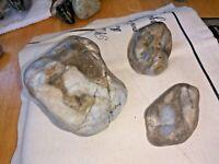 beautiful raw opals  snake river gemstones lot 1+lb