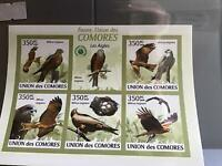 Comoro Islands 2009 Birds  mint never hinged stamp sheet R24051