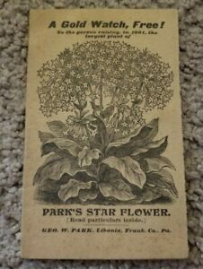 """Antique George W PARK'S FLORAL MAGAZINE """"Star Flowers"""" 1901 ILLUSTRATED 16 pages"""