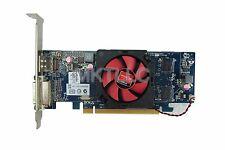 Dell AMD Radeon HD6450 1GB DVI DisplayPort PCI-e Video Card 2C7NH