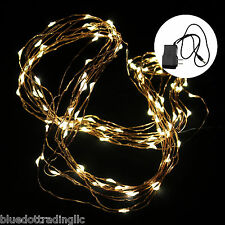 10M/100LED copper wire String Fairy Wedding Lamp Party Xmas LED Light & Adapter