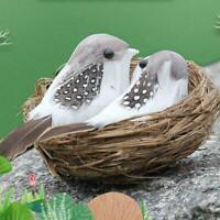 Realistic Feather Bird With Nest And Bird Eggs Garden Bird Nest Decoration F0N9