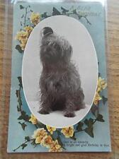Yorkshire Printed Collectable Animal Postcards