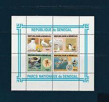 Sénégal   bloc  parcs nationaux  oiseaux    1981   num: 24 **