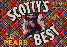 Dryden Washington Scottys Best Scottish Terrier Dog Pear Fruit Crate Label Print