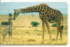 RARE / CARTE TELEPHONIQUE - GIRAFE ET GIRAFON GIRAFFE AFRIQUE ANIMALS/ PHONECARD