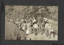 Nostalgia Postcard Elephants at London Zoological Gardens Regents Park London