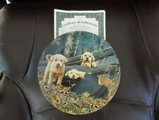 The Bradford Exchange Sweet Dreams Dog Days Collector Plate W/Certificate of Auh