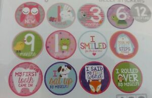 NEW 12 BABY MILESTONE MONTH BELLY STICKERS BY ABG BABY