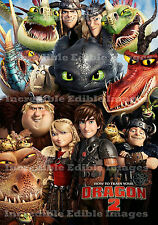 19cm X 25cm How to Train Your Dragon Icing Cake Topper