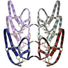 NEW HORSE PONY COB FULL SMALL PONY HEAD COLLAR LEAD ROPE SET KNIGHT RIDER