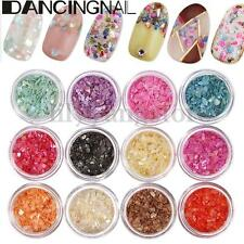 12 Colors 3D Nail Art Glitter Crushed Shell Chips Powder Dust Tips DIY Decor
